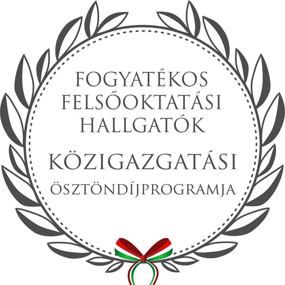 Fogyatékos Felsőoktatási Hallgatók Közigazgatási Ösztöndíjprogramja 2019-ben is!